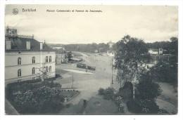 Carte Postale - BOITSFORT - Maison Communale Et Avenue Du Souverain - Tram - CPA  // - Watermael-Boitsfort - Watermaal-Bosvoorde
