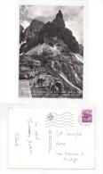 Cartolina/postcard Dolomiti. San Martino Di Castrozza. Il Cimon Della Pala Visto Dalla Stazione Della Seggiovia Del Sole - Trento