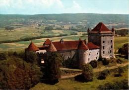Le Château Du PIN (époque Féodale) Aux Environs De Lons-le-Saunier - France