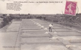 St Hilaire De Riez, Les Marais Salants, Paludier Tirant Le Sel - Saint Hilaire De Riez