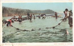 CPA - US - OREGON - Salmon Fishers On The Columbia River - Pêcheurs, Poissons, Filets - Etats-Unis