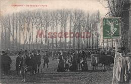 17 -   GEMOZAC - Le Champs De Foire    - 2 Scans - Montendre