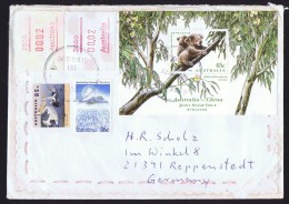 1996  Letter To Germany  Koala Souvenir Sheet SG MS 1551, Framas, AAT, Other - Australian Antarctic Territory (AAT)
