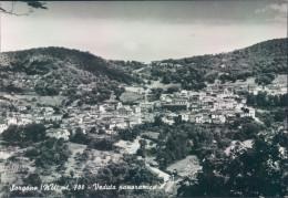 D235 - Sorgono - Nuoro - Nuoro