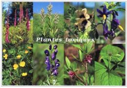 (F)   Plantes Toxiques - Giftige Pflanzen