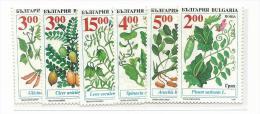 FRFI165 - BULGARIA - CEREALI - Vegetazione