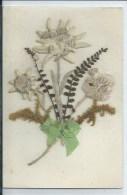 411Go   Cpa Avec Fleurs Sechées Collées Des Alpes Edelweiss - Non Classificati
