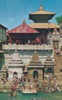 Temple Of Pasupati Nath, Kathmandu . -  Nepal   S-1662 - Nepal