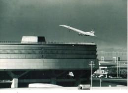 Concorde - 1946-....: Moderne