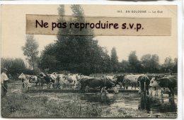 - 1911 - EN SOLOGNE - Le Gué - Troupeau De Vaches, Paysan, Non écrite, BE, Scans. - Non Classés