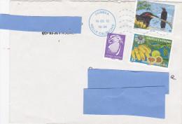 Z3] Enveloppe Cover Nouvelle-Calédonie New Caledonia Birdlife Bird Méliphage Toulou Crow Honeyeater Gymnomyza Aubryana - Covers & Documents