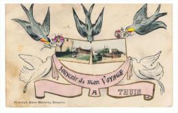THUIN - SOUVENIR DE MON VOYAGE A ...- Hirondelles - Colombes - Thuin