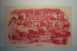 A  SITUER - ( Sans Légende ) -MARCHE -  Collection Idéale P.S. -  Carte Publicite - Algerien