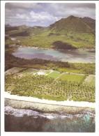 98 - Huahine - Plantations Devant Le Village De Maeva - Air Polynésie - éd. Erwin Christian N° 360 - Polynésie Française