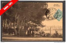 1911 TARANTO VILLA PERIPATO FP V SEE 3 SCANS INGRANDIMENTO ANIMATA TIMBRO TARANTO-LECCE - Taranto