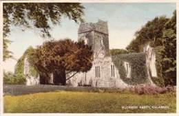 NV6/  Muckross Abbey Killarney Kerry Co. Ireland - Kerry