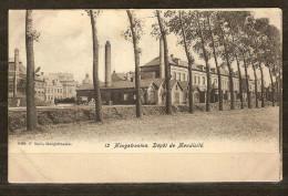 Hoogstraeten  Kasteel + Werkhuizen Gebruikt  Stempel 1909 Uitgever F Smit   2 Scans - Hoogstraten