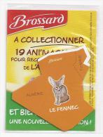 MAGNET LE FENNEC D´AFRIQUE SAVANE BROSSARD  ( ALGERIE - TUNISIE ) - Animaux & Faune