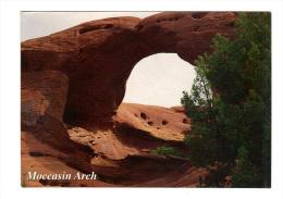 Etats Unis: Moccasin Arch, Monument Valley, Utah Arizona (14-3570) - Monument Valley