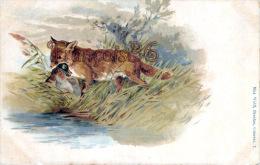 CPA Illustration : Renard Un Canard Dans La Gueule - Fox With Duck - Max Wolff, Breslau - Animales