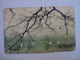 Vietnam Viet Nam Used Chip 30000d Phone Card / Phonecard : Guom Lake In Hanoi / 02 Images - Vietnam