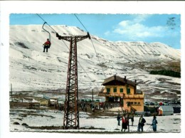 CP - LIBAN BEYROUTH   TELESIEGE DES CEDRES - Cartes Postales