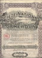 S. NATIONALE CAMEROUN - Afrique