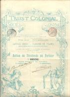 TRUST COLONIAL - Afrique