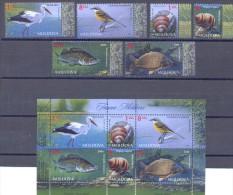 2014. Moldova, Fauna Of Moldova, Birds,snails,fishes, 6v + S/s,, Mint/**
