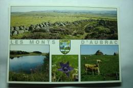D 48 - Les Monts D'aubrac - Francia