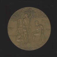 M�daille - Bruxelles 1912 Inauguration Maison Wolfers Fr�res