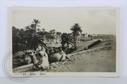 Old Postcard Real Photo Postcard - Lybia - Oasi - Camel - Edited: Superedizione, Tripoli - Unposted - Libia