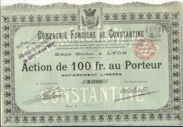 COMPAGNIE FONCIERE DE CONSTANTINE - Afrique