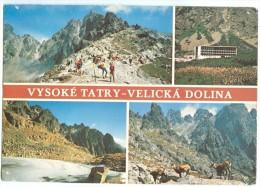 Slovakia, VYSOKE TATRY VELICKA DOLINA, The High Tatras, Used Postcard [14115] - Slovakia
