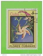 TIMBRES - CUBA - LOT DE 10 TIMBRES DE FLEURS - USED - - Collections, Lots & Séries