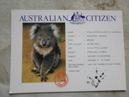 Australia  - Australian  Citizen  - KOALA     D120871 - Non Classés