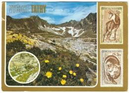 Slovakia, VYSOKE TATRY, Used Postcard [14135] - Slovakia