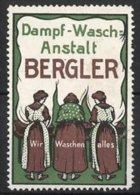 """Vignette Publicitaire Dampf-Wasch-Anstalt Bergler, """"Wir Waschen Alles!"""", Frauen Waschen Wäsche - Cinderellas"""