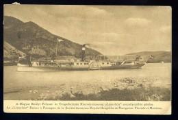 Cpa De Hongrie La Leanyfalu Bateau à Passagers De La Royale Hongroise De Navigation Fluviale Et Maritime  AO50 - Hungary