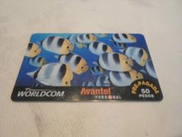 MEXICO - nice prepaid card fishes - VERY NICE IMAGE