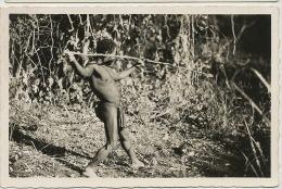 Real Photo 134 Oubangui Chasseur Babinga Pygmé Nu Avec Lance Nude Pygmé Hunter Edit Pauleau Douala - Centrafricaine (République)