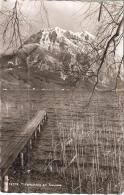 AK 1019  Vorfrühling Am Traunsee - Foto Rhomberg Um 1960 - Traun