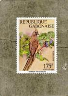 GABON : Oiseaux Du Gabon : Coliou Strié ( Collius Striatus) - Gabon (1960-...)