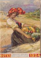 """CALENDARIO 1924 /  """" LIBRETTO APPUNTI PER L'AGRICOLTORE """" _ ILLUSTRATORE - Calendari"""