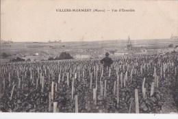51 VILLIERS MARMERY  Homme Dans Les VIGNES VIN RAISIN Et Vue Sur Le VILLAGE Maisons EGLISE à Travers CHAMPS - Francia