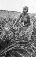 Les Ananas --'Sein Nu ) - Costa De Marfil