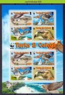 Nbx413MSb WWF FAUNA ROOFVOGELS RED-TAILED HAWK BIRDS OF PREY GREIFVÖGEL AVES OISEAUX TURKS & CAICOS 2007 PF/MNH # - W.W.F.