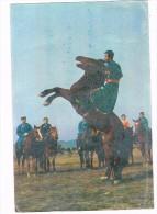 ASIA-795   MONGOLIA : Horse-breaking - Mongolie