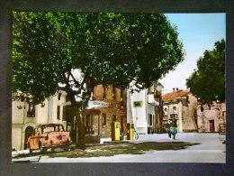CALABRIA -CATANZARO -CICALA -F.G. LOTTO N 417 - Catanzaro