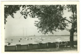 Serbia, SUBOTICA, Palic, 1958 Used Real Photo Postcard [14174] - Serbia